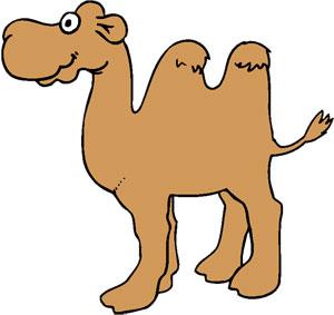 Pin dessiner le corps humain pastel dessin livres on pinterest - Dessiner un chameau ...